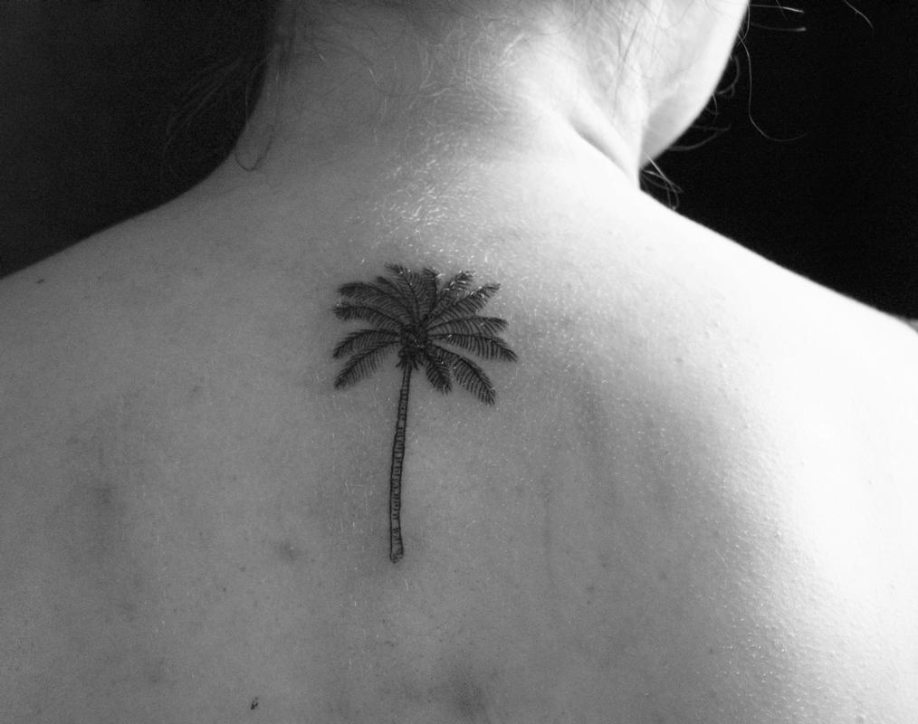 Palm Tree Tattoos: Everything You Need to Know
