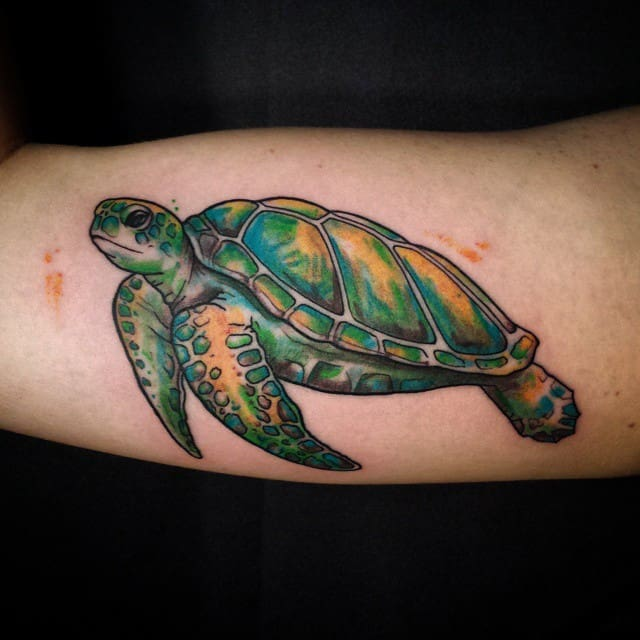 Brilliant and Vibrant Sea Turtle tattoo Pictures