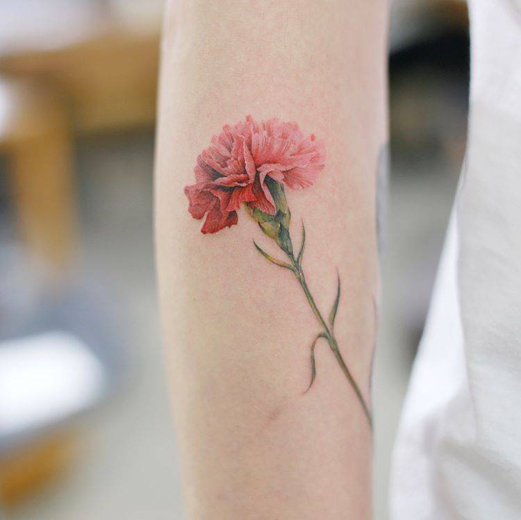 Carnation flower Tattoo – Meaning and Symbolism