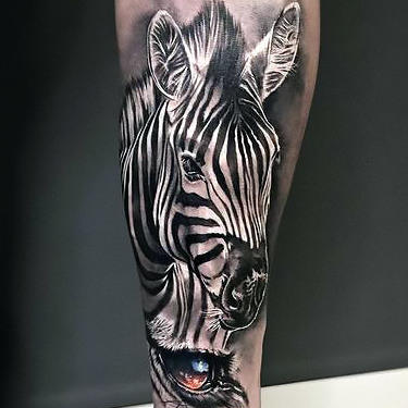 Zebra Tattoo Designs – What is Your idea?
