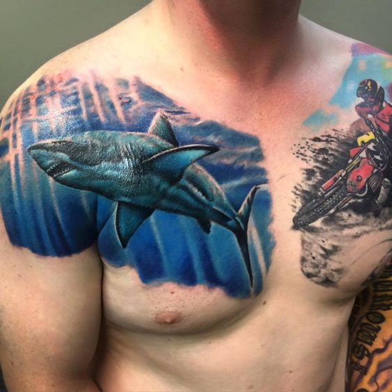 Shark Tattoo Ideas – You Can Show Off Your Style With One of These
