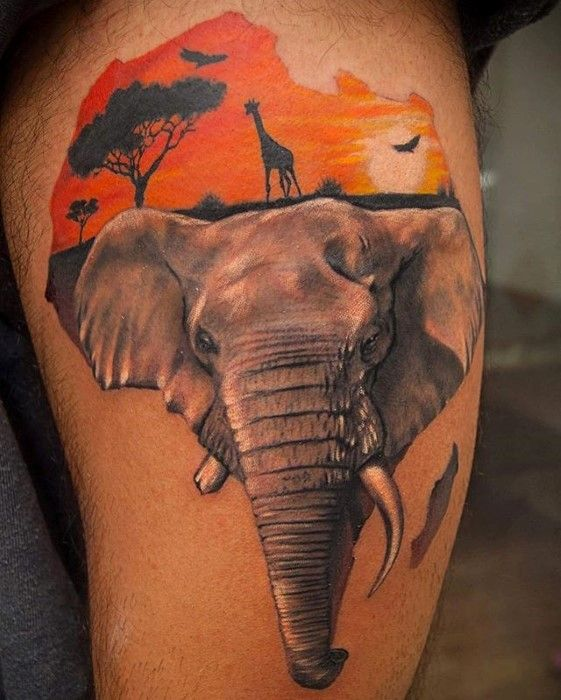 Beautiful African Elephant Tattoo Design