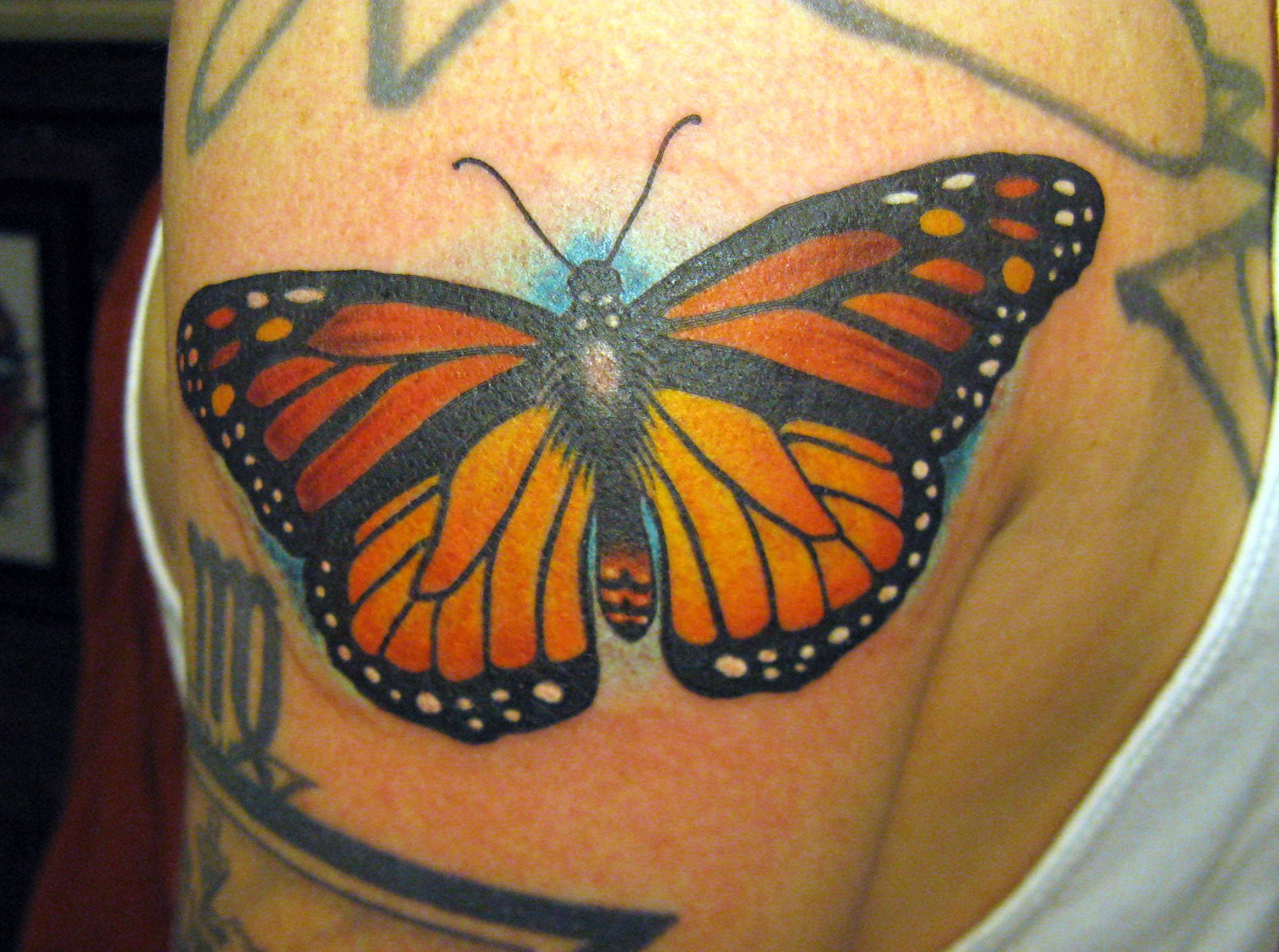 Monarch Butterfly Tattoo – The Best Tattoo Picture Or Artwork