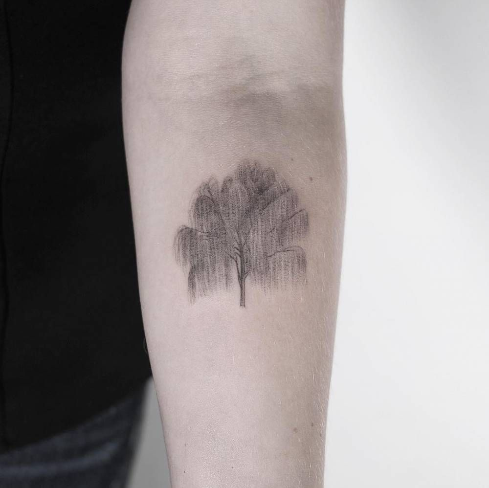 Weeping Willow Tattoo Meaning