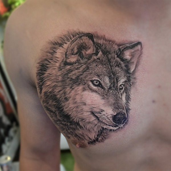 Top wolf chest picture design Ideas – How to Find Your Perfect Costume Wolf Picture design